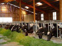 agriculturemin1